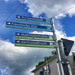 universität frankfurt am main studiengänge